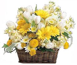 Оптом февраля цветы шары доставка уфа где купить